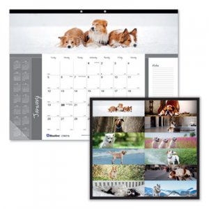 Brownline Pets Collection Monthly Desk Pad, 22 x 17, Puppies, 2020 REDC194116 C194116