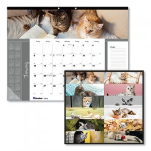 Brownline Pets Collection Monthly Desk Pad, 22 x 17, Furry Kittens, 2019 REDC194115 C194115