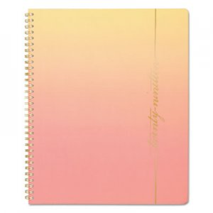 Cambridge Arizona Weeky/Monthly Planners, 8 1/2 x 11, Orange, Yellow, 2019 AAG5139905 5139905