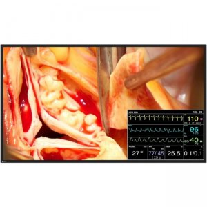 Eizo CuratOR Widescreen LCD Monitor LX491W-BK