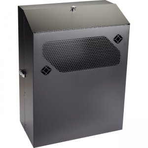 "Black Box Low-Profile Vertical Wallmount Cabinet - 6U, 24""D Equipment RMT353A-R3"