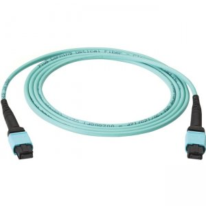 Black Box Fiber Optic Trunk Network Cable FOTC10M3-MP-24AQ-10