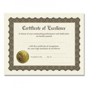 Great Papers! Ready-to-Use Certificates, 11 x 8.5, Ivory/Brown, Excellence, 6/Pack COS930600 930600