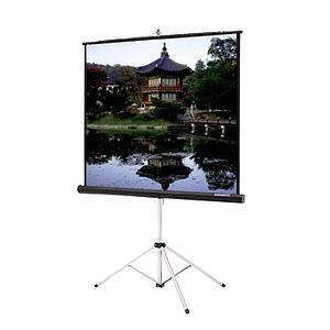 Da-Lite Picture King Portable and Tripod Projection Screen (Gray carpeted) 69899