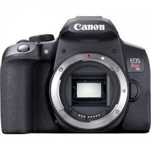 Canon EOS Rebel (Body Only) 3924C001 T8i
