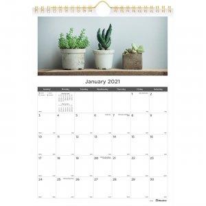 Rediform Succulent Plants Wall Calendar C171121 REDC171121