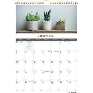Rediform Succulent Plants Wall Calendar C173121 REDC173121