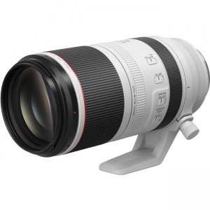 Canon RF100-500mm F4.5-7.1 L IS USM 4112C002