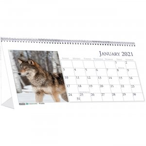 House of Doolittle Wildlife Photo Desk Top Tent Calendars 3689 HOD3689