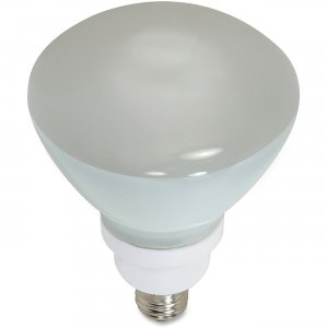 Satco 23-watt CFL R40 Compact Floodlight S7241 SDNS7241