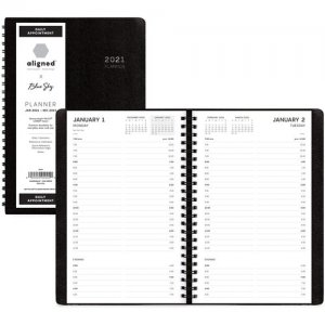 Blue Sky Aligned Daily Appointment Planner 123853 BLS123853