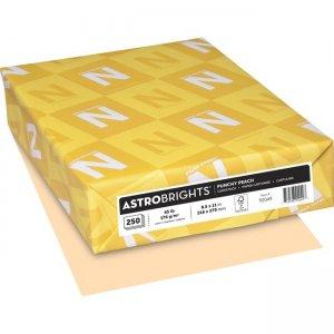 Astro 65 lb Cardstock 92049 WAU92049